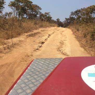 Zambian Videos